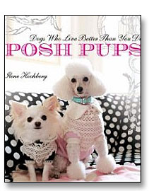 posh pups